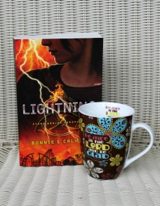 Stone Braide Chronicles – Lightning Book Review and Giveaway