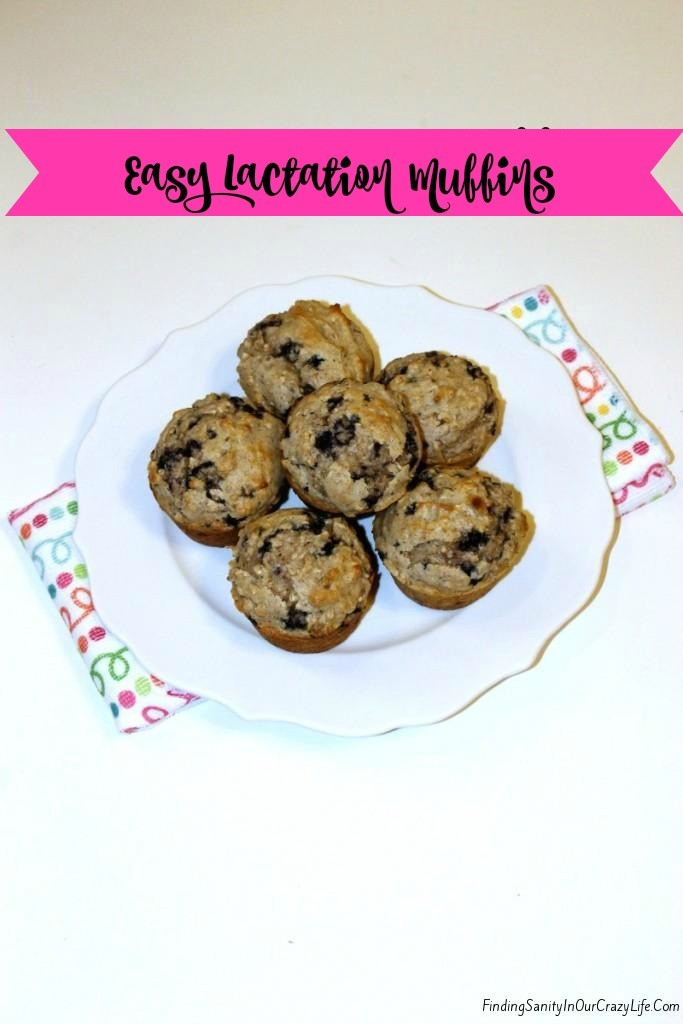 Tasty-Easy-Lactation-Muffins-1