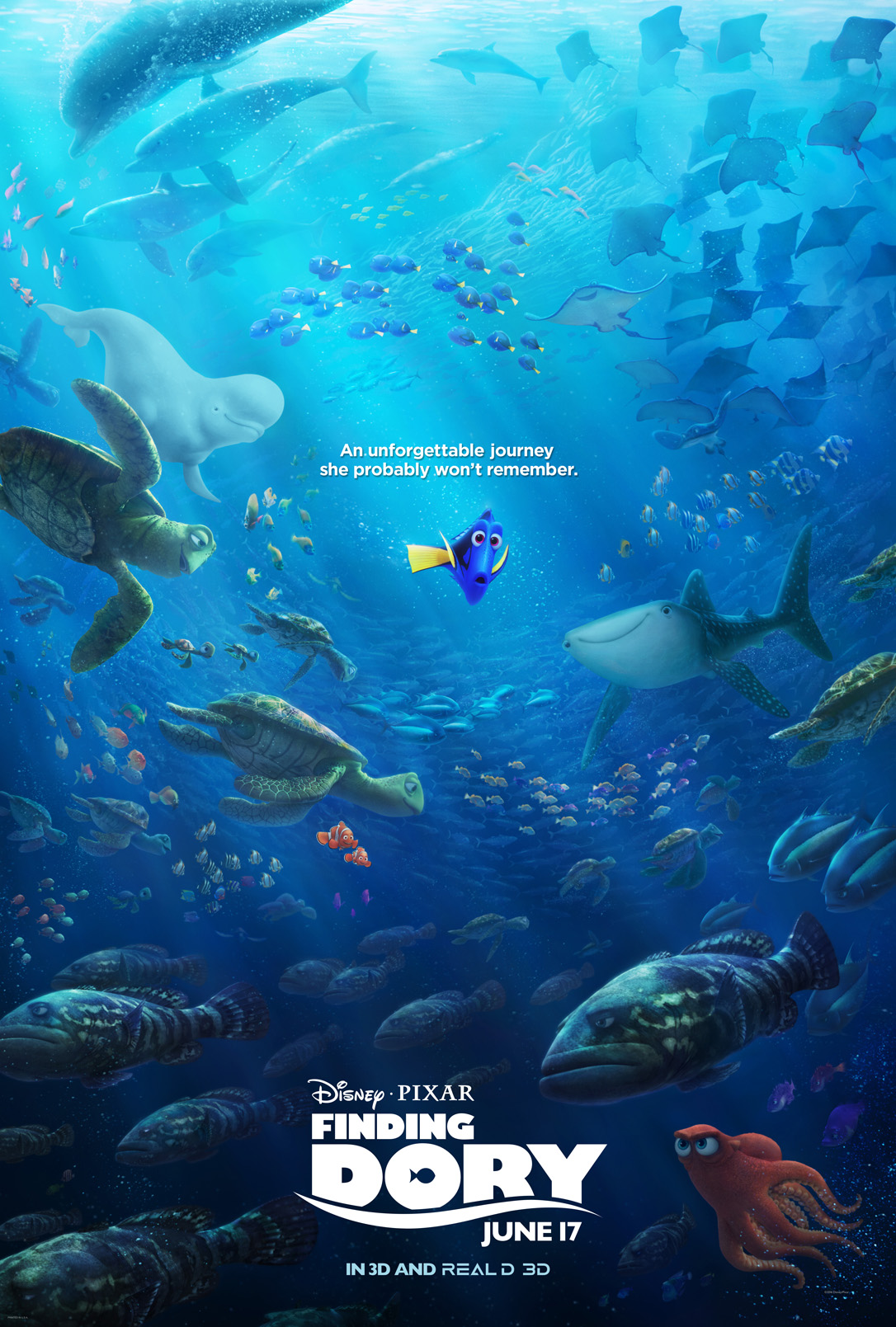 Finding Dory Educational
