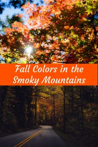Best time to see fall colors