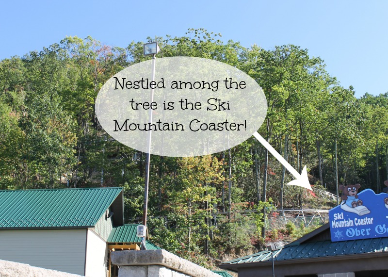 ski-mountain-coaster-ober-gatlinburg