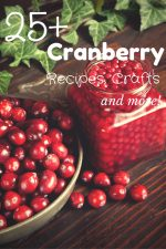 25+ Cranberry Recipes, Crafts and More – #SoFabSeasons