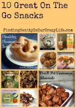 10 Great On The Go Snacks