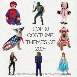 Top 10 Costume Themes of 2014
