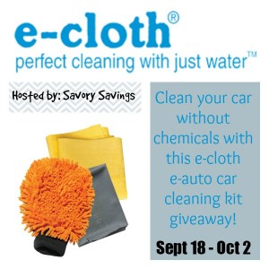 E-Cloth Car Cleaning Kit Giveaway