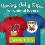 Shaggy Chic Apparel Giveaway #2014HGG