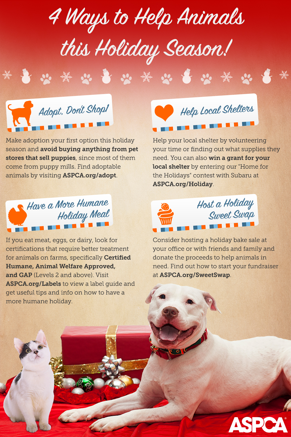 4 Ways To Help Animals This Holiday Season Finding
