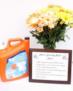 Printable Laundry Room Rules Sign #TryMembersMark