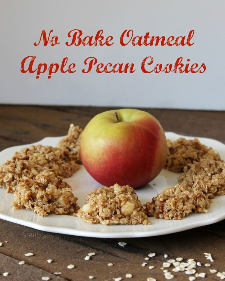 Make Back to School lunches tastier with these delicious No Bake Oatmeal Apple Pecan Cookies. #BackToSchool #Cookies