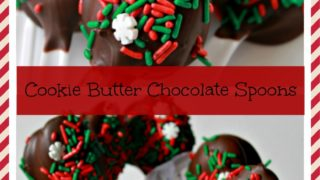 Cookie Butter Chocolate Covered Spoons