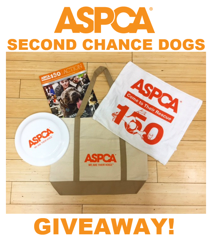 second-chance-dogs-gift-pack