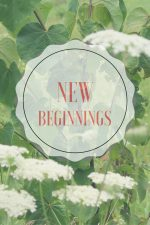 New Beginnings for our Family – #BehindtheBlogger