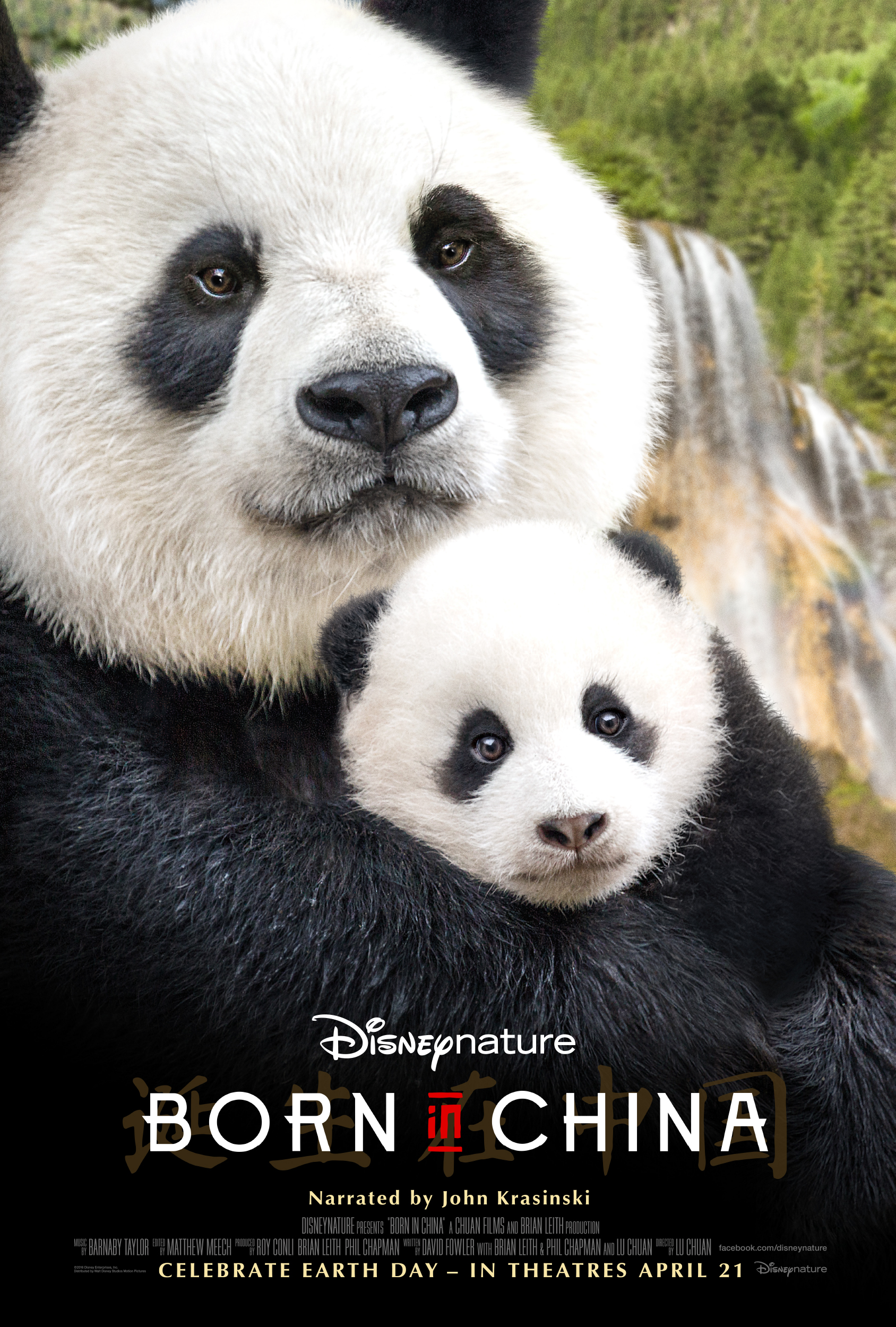 Born In China MoviePoster