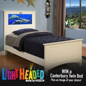 LightHeaded Bed Giveaway